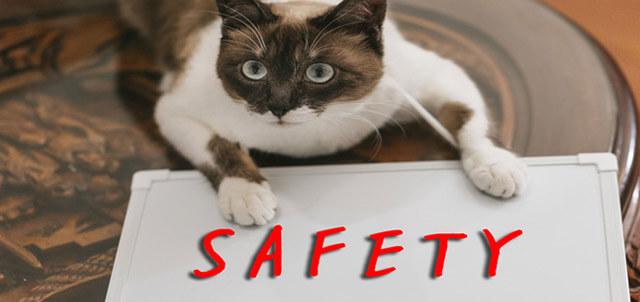 バイナリーオプションは安全