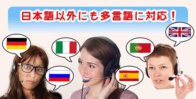 オプションビット_日本語