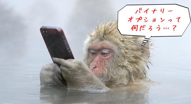 バイナリーオプションについて調べる猿