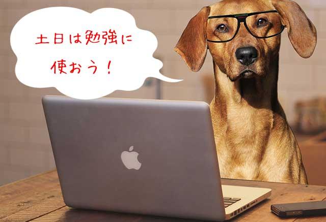 土日は勉強する時間に使おう!