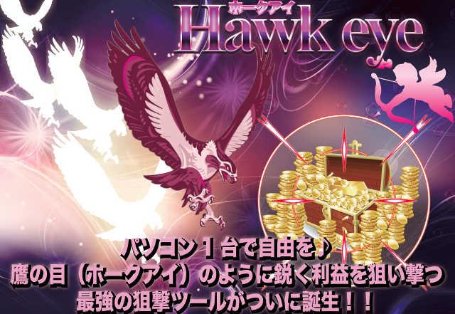 Hawk eyeについて